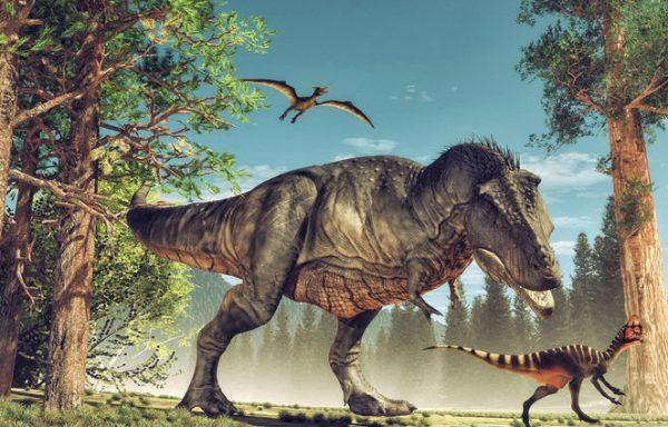 2 dni – Toruń – Park Rozrywki Dinozaurów Solec Kujawski